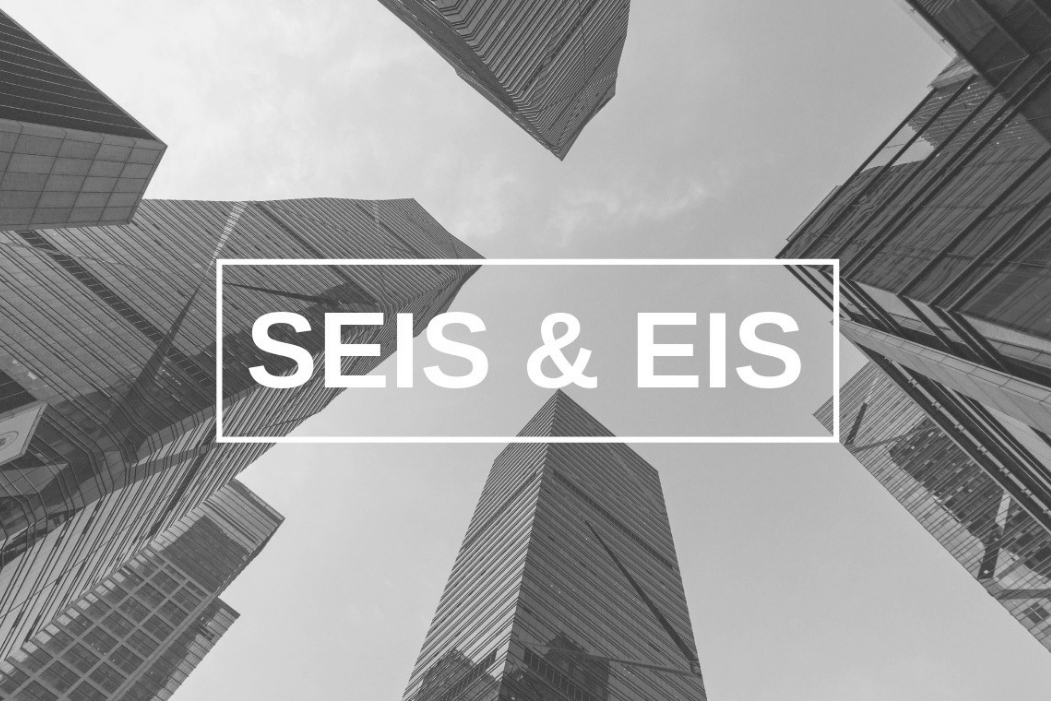SEIS EIS infographic Angels Den